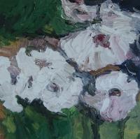 Sommer 2015, Rosen IV, 30 x 30 cm