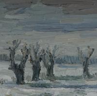 Winter am Kühkopf, 30 x 30 cm