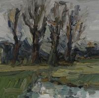 Am Altrhein im Winter V, 30x30 cm