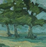 Scheftheimer Eichen, 30 x 30 cm