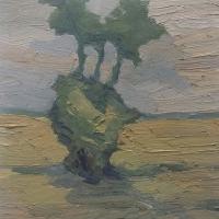 Baumgruppe im Feld, 30 x 30 cm