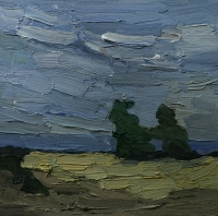 Rügen, Felder vor der See